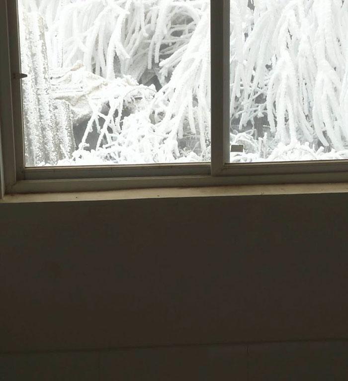 Garoto congela a caminho da escola (5)