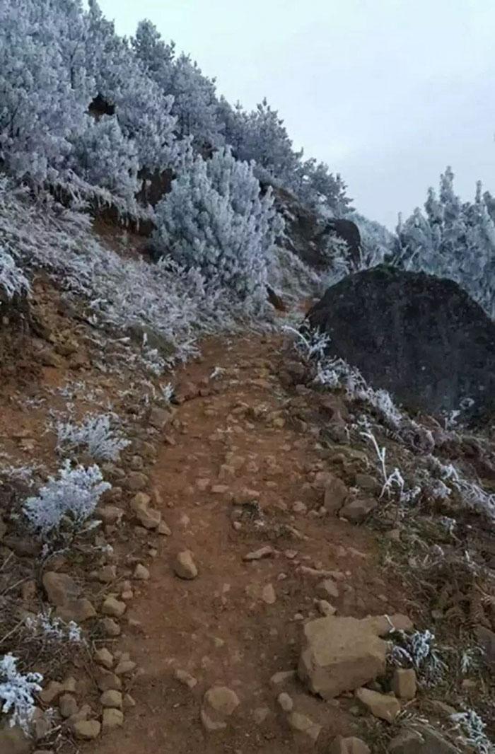Garoto congela a caminho da escola (9)