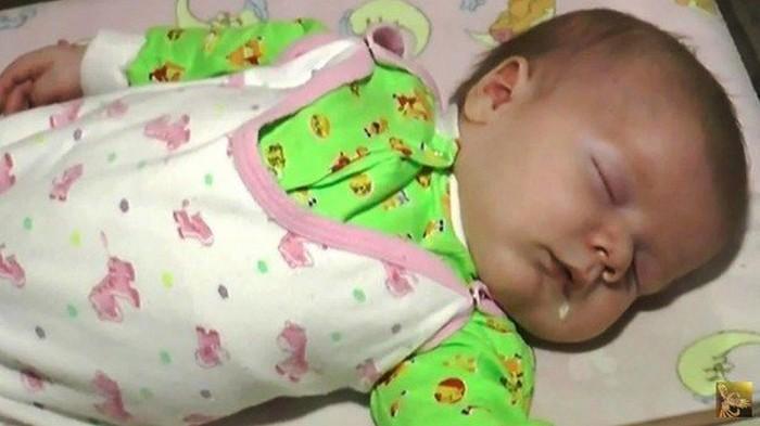 Gata salva a vida de bebê abandonado no frio (3)