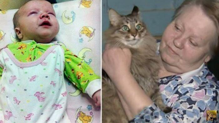Gata salva a vida de bebê abandonado no frio (2)
