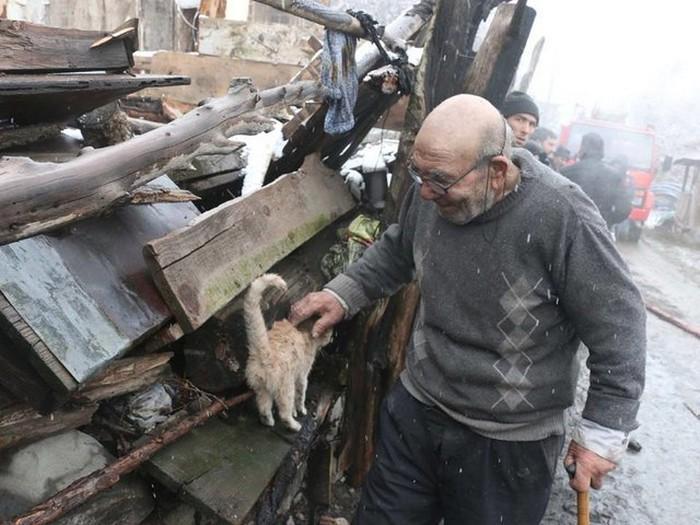 senhor perde casa em incêndio e reencontra gatinho (5)