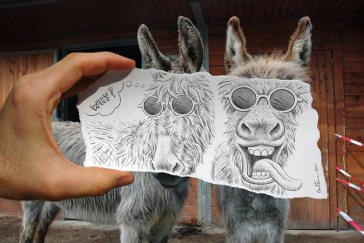 Lápis vs fotografia (6)