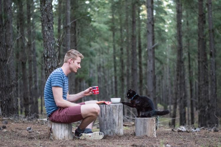 Viajando com o gato (2)