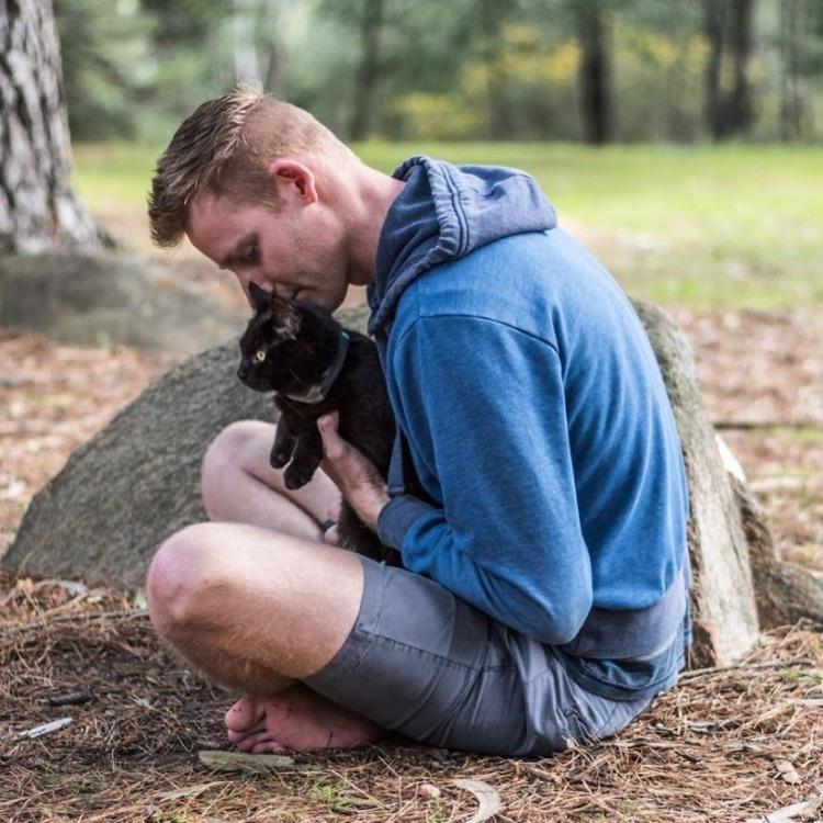 Viajando com o gato (9)