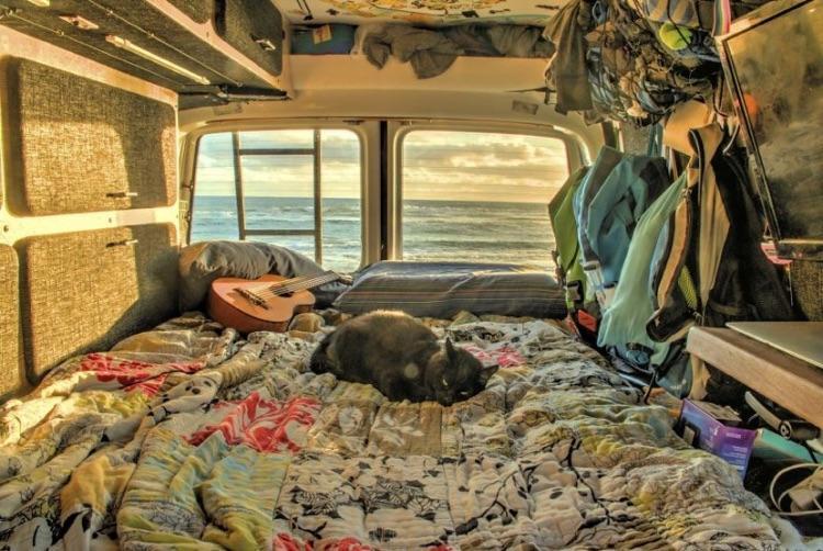 Viajando com o gato (15)
