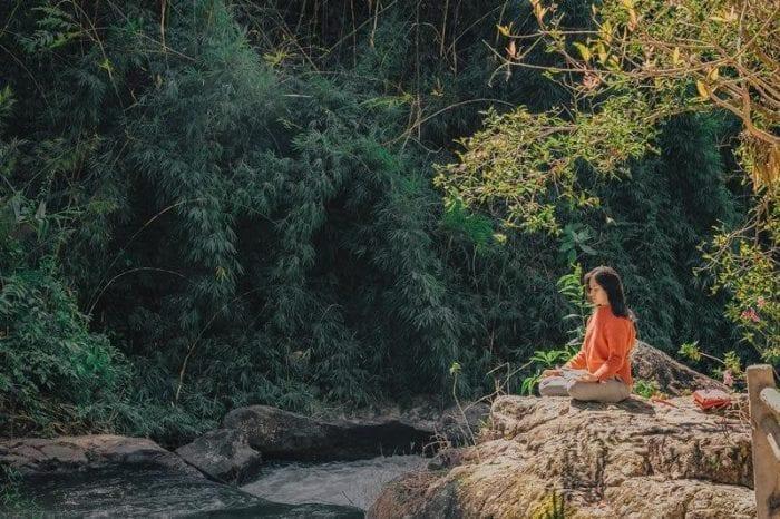 mindfulness é bom para multitarefa