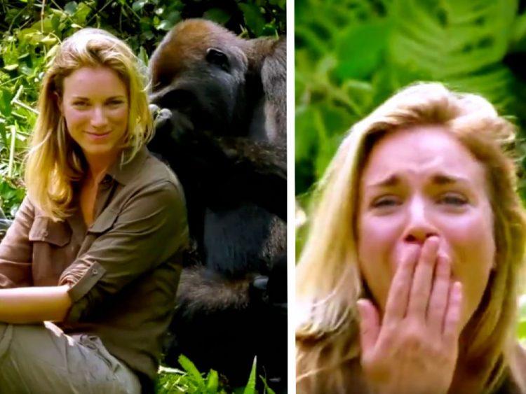 Imagem de capa mostra Victoria em meio aos gorilas