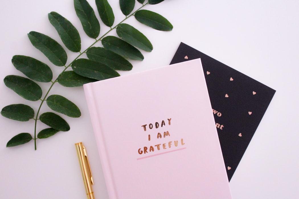 Gratidão é um dos sentimentos mais lindos do mundo