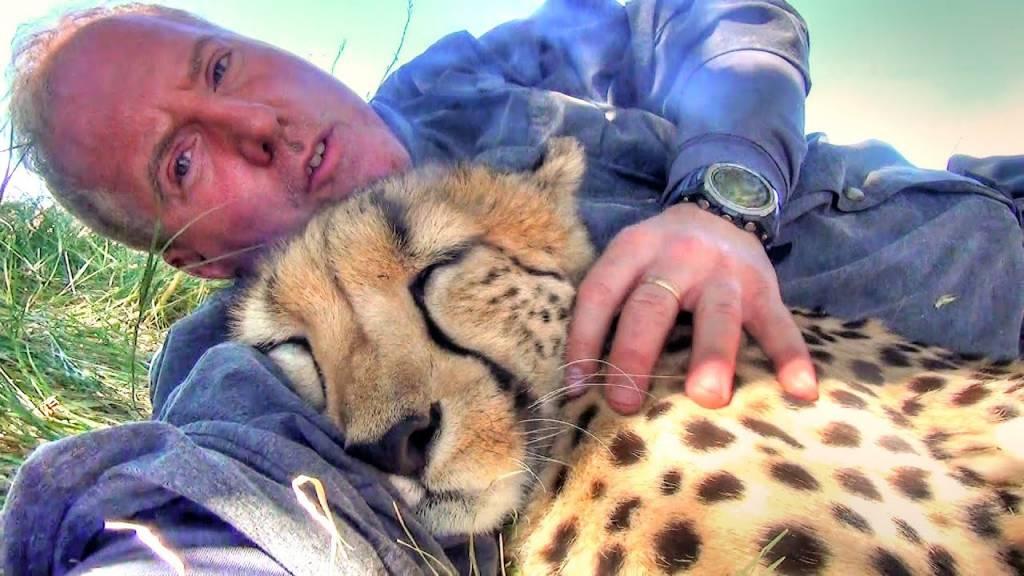 guepardo-dorme-ao-lado-de-fotografo