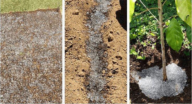 homem-cria-po-para-irrigar-plantas