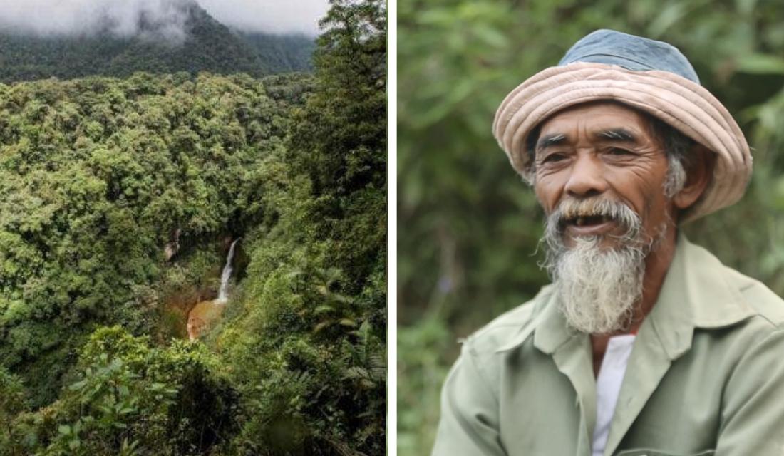 senhor-planta-11-mil-árvores