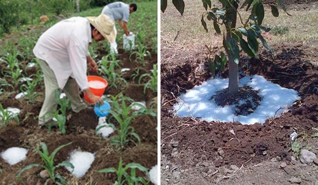 Engenheiro cria solução impensável para reduzir uso de água em irrigações