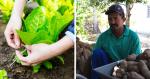 28 de julho - Dia do Agricultor: um homenagem especial em fotos!