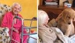 Essa senhora de 100 anos recebe a melhor companhia que alguém pode ter