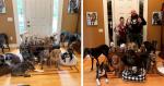 Casal gasta quase R$ 300 mil para transformar casa e conseguir abrigar cães idosos