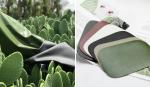 Mexicanos encontram forma genial para substituir o couro animal