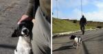 Soldado adota cachorrinha que apreendeu drogas