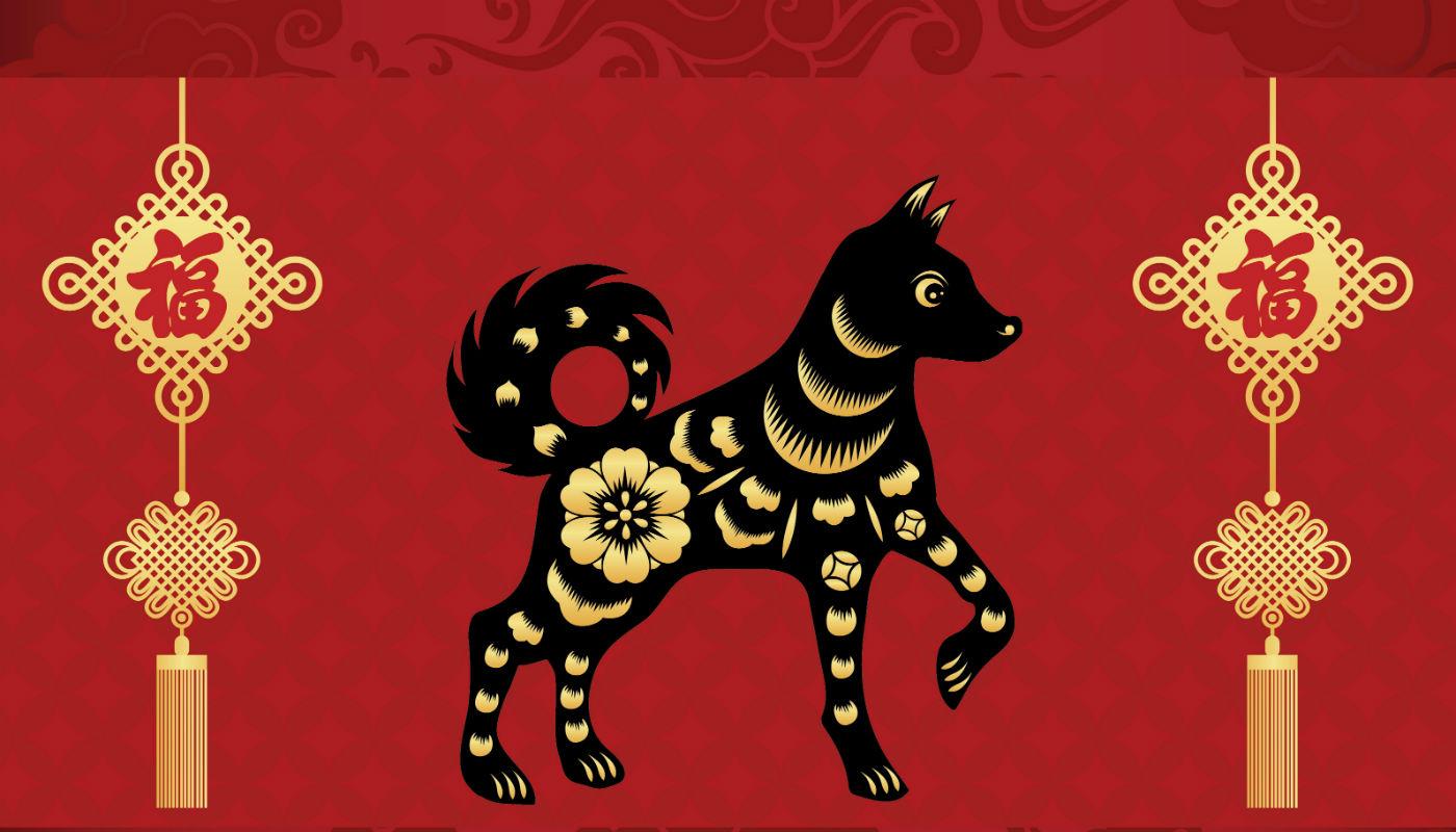 Cão Chinês