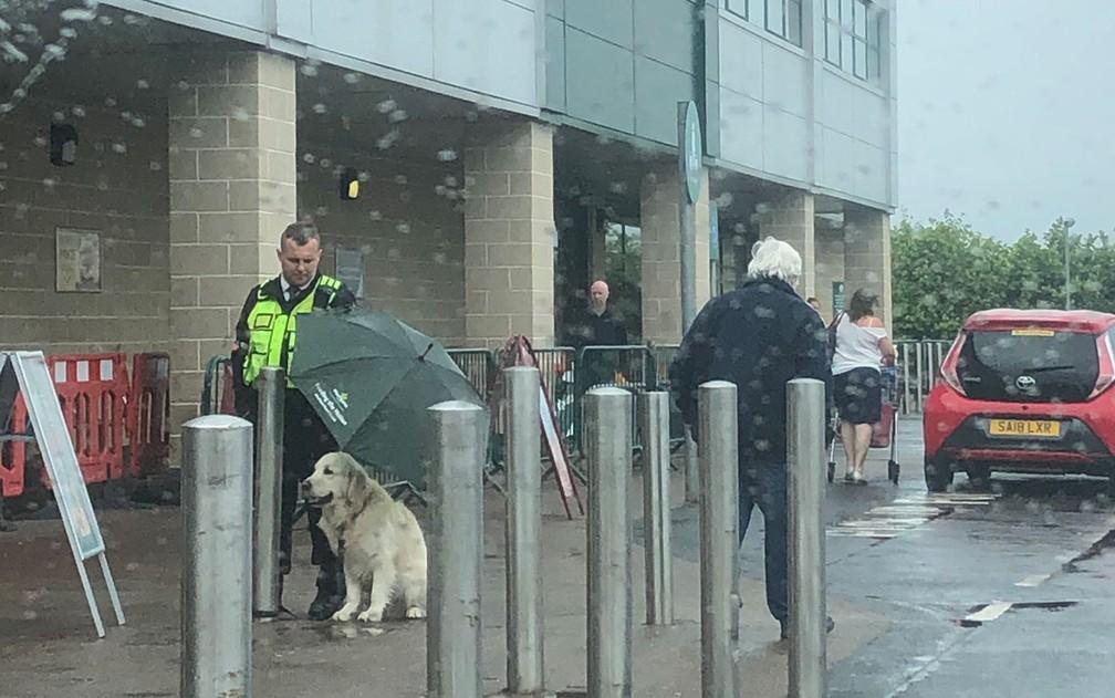 segurança-de-supermercado-protege-cachorro-da-chuva