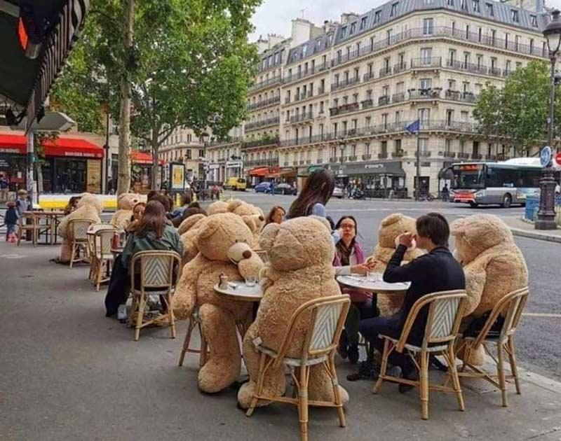 restaurante-usa-ursos-de-pelucia-para-manter-distanciamento