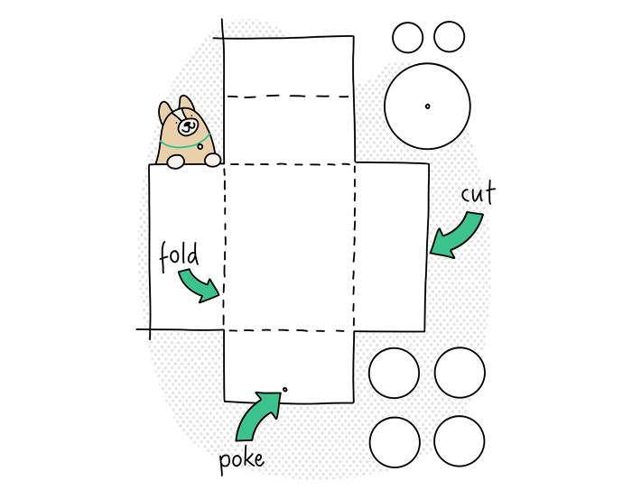 casas-gatos-com-caixas-amazon