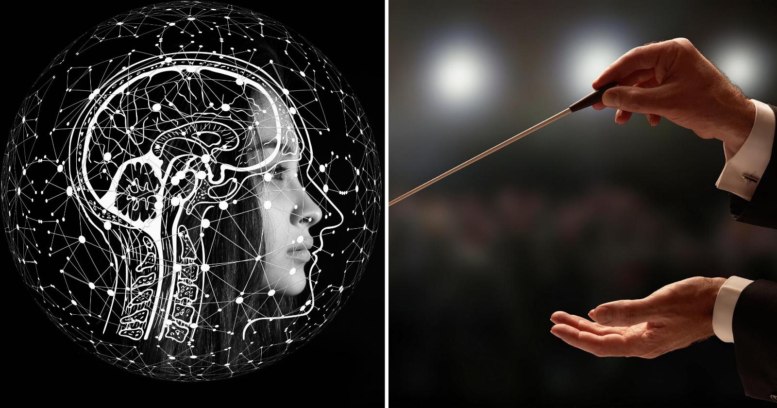 Encontre seu ritmo e entenda o porquê do seu cérebro ser uma orquestra!