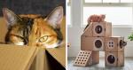 Amazon ensina aos clientes formas simples de criar casas para gatos, com suas caixas!