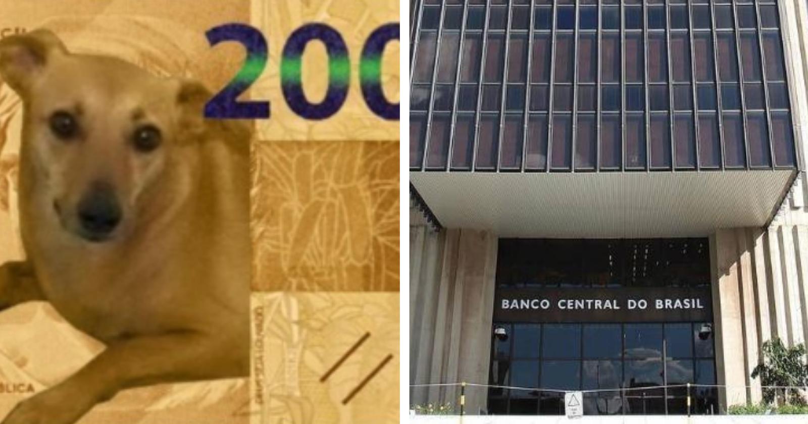 Banco Central dá resposta inusitada sobre petição de vira-lata caramelo em cédula de R$ 200