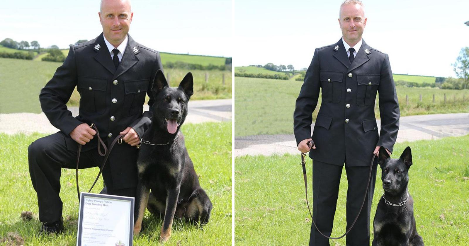 Em primeiro dia de trabalho, cão policial faz algo extremamente surpreendente ao resgatar mãe e filho