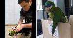 video-seguranca-do-metro-salva-ave-tomando-atitude-heroica-apos-acidente