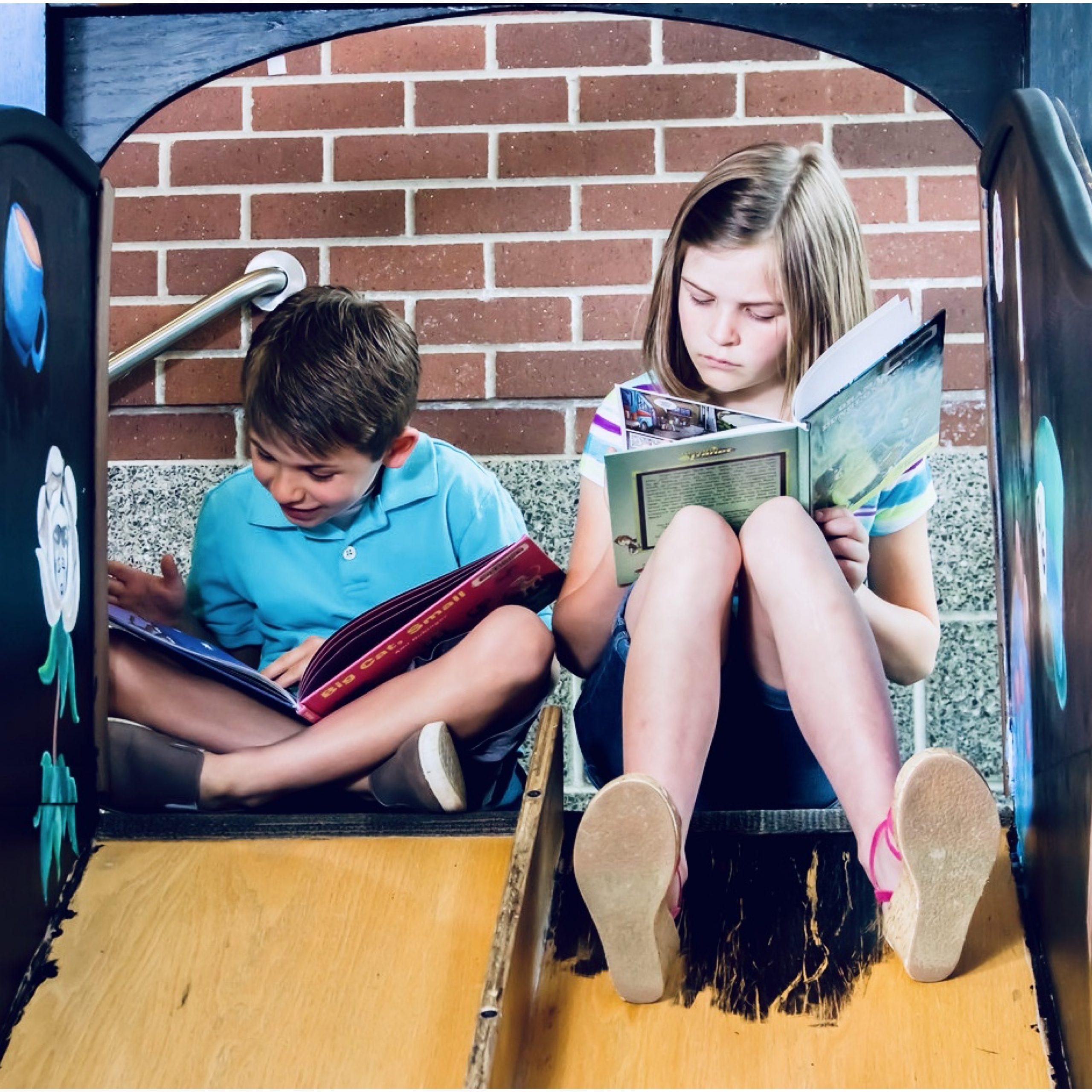livros-infantis-para-adultos