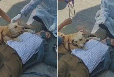 Deficiente visual passa mal, é protegido por sua cadela e recebe surpresa de desconhecidos