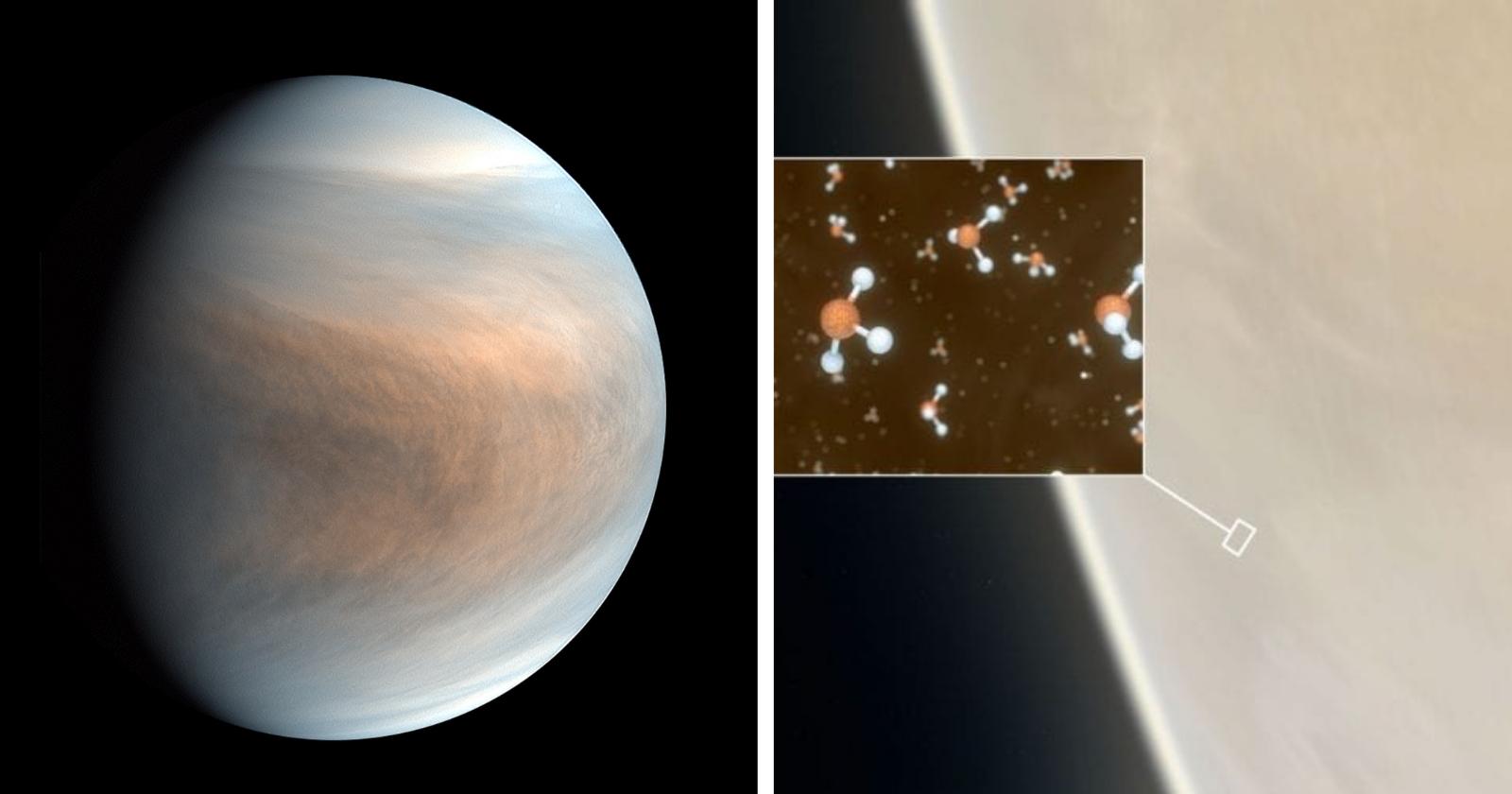 Será que existe mesmo vida extraterrestre em Vênus? Cientistas esclarecem que...