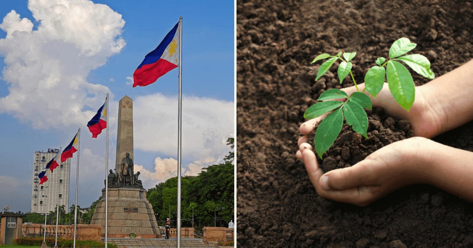 Filipinas lança lei onde alunos só poderão se formar, se plantarem 10 árvores