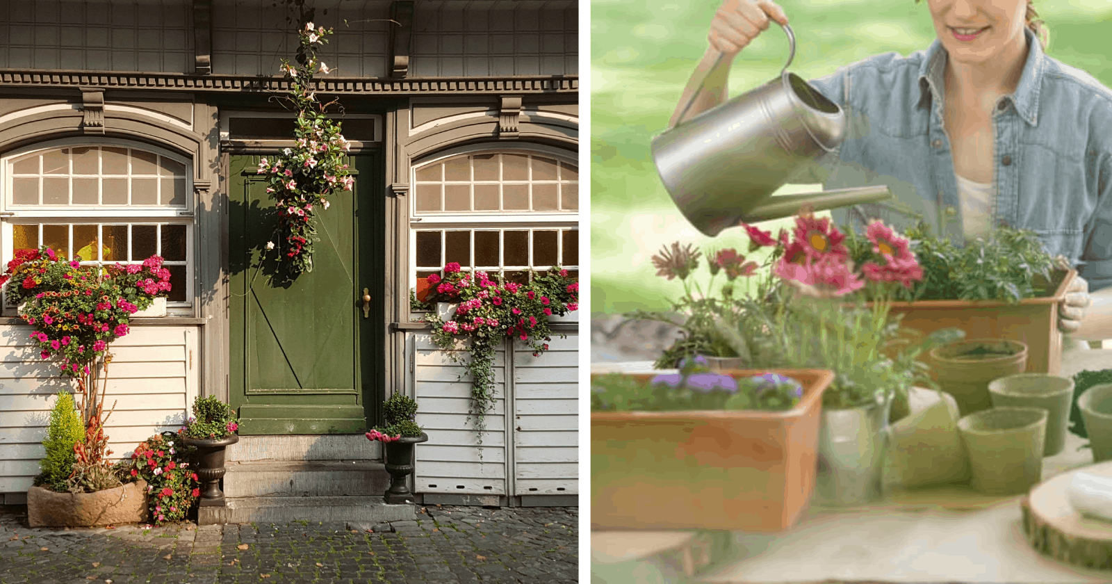 16 motivos PIEDOSOS para ter flores em sua casa
