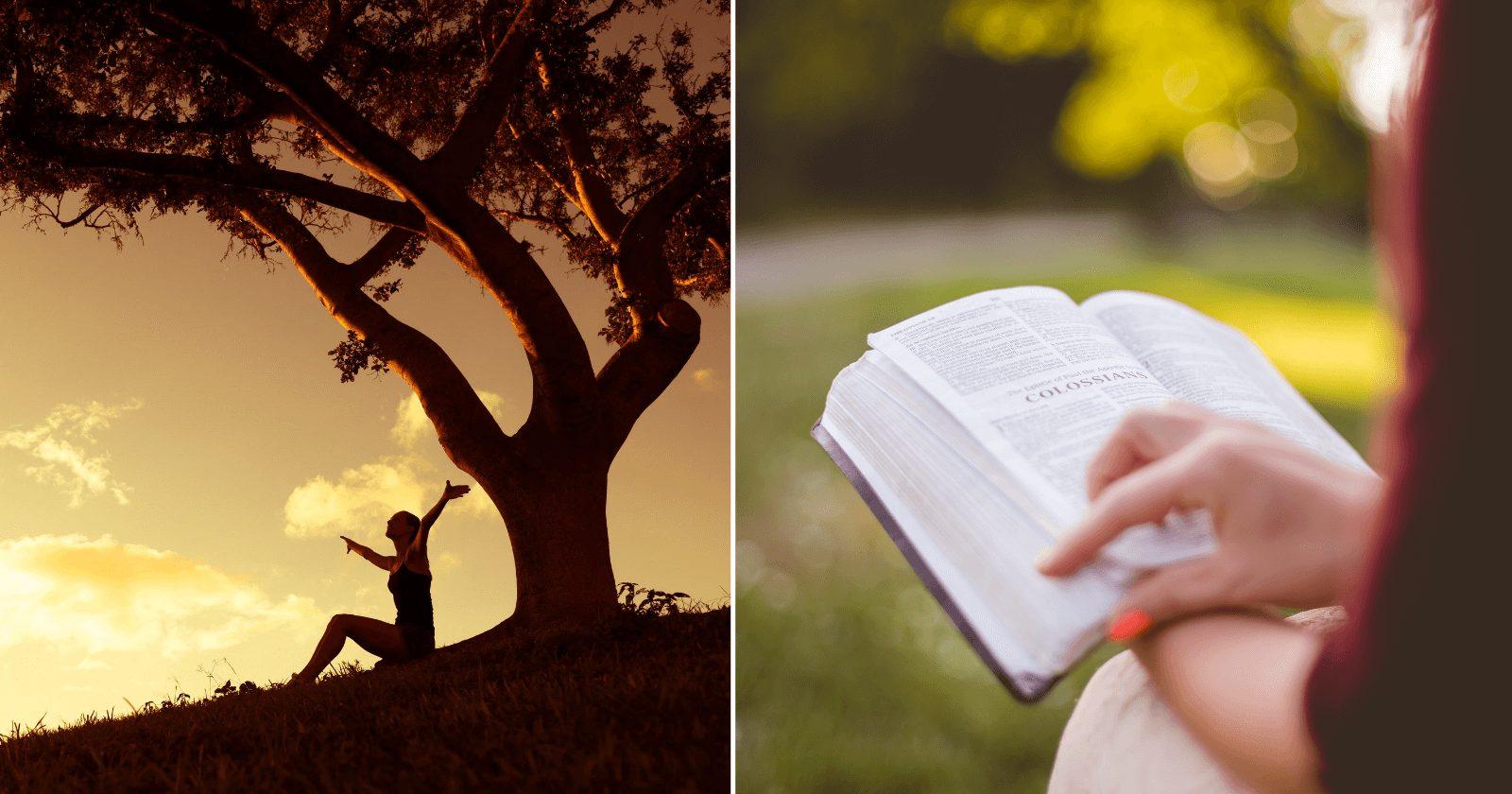 71 Versículos sobre ESPERANÇAS para se sentir renovado!