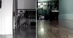 Mulher põe câmera escondida em casa e descobre o que GATA fazia em SEGREDO