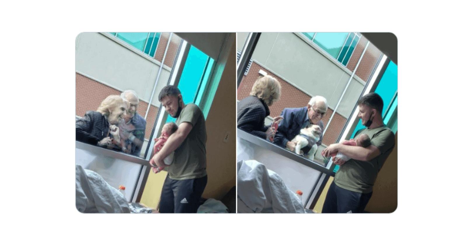 Filho apresenta recém nascido para bisavôs e cãozinho da janela de hospital (reação do doguinho é a melhor)