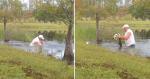 VÍDEO: Idoso luta na água e consegue tirar seu cachorrinho de dentro da boca de um crocodilo