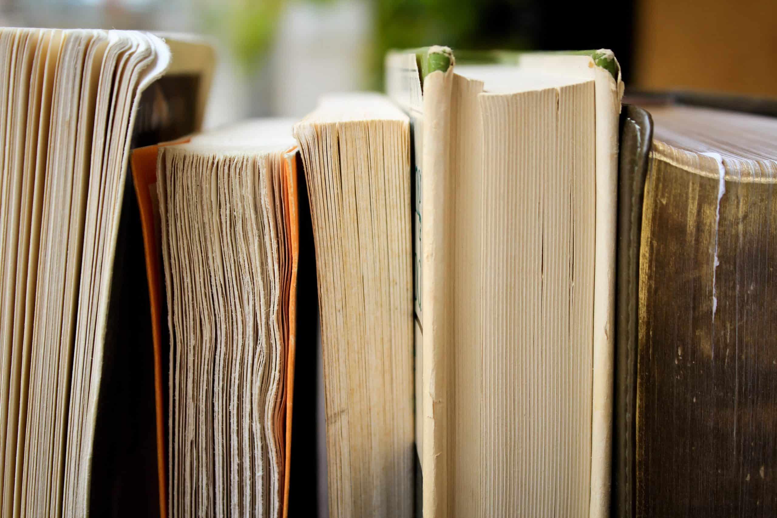 livros-para-ler-antes-do-ano-acabar