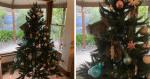 Ao voltar para casa, família leva susto ao ver o que está PENDURADO na árvore de Natal