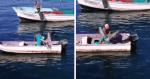Homem é FLAGRADO pegando um pelicano nos braços e fazendo o que ninguém esperaria