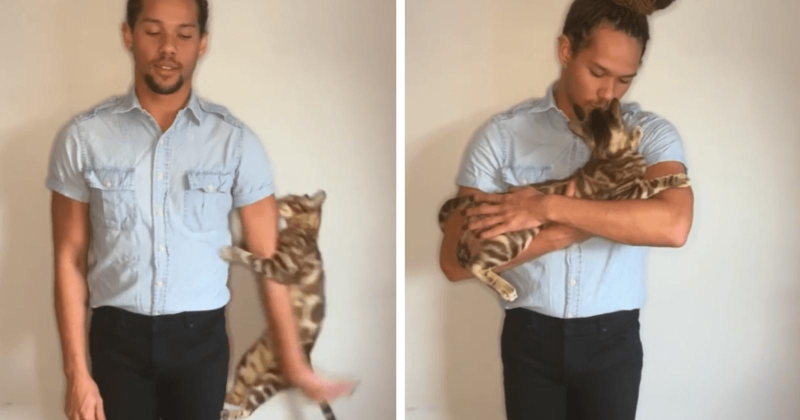 Ator tenta gravar vídeo para audição, mas gato o interrompe da melhor forma (e sem parar)