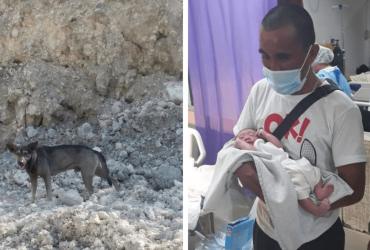 Cachorro LITERALMENTE para motociclista e homem salva bebê recém nascido abandonado!