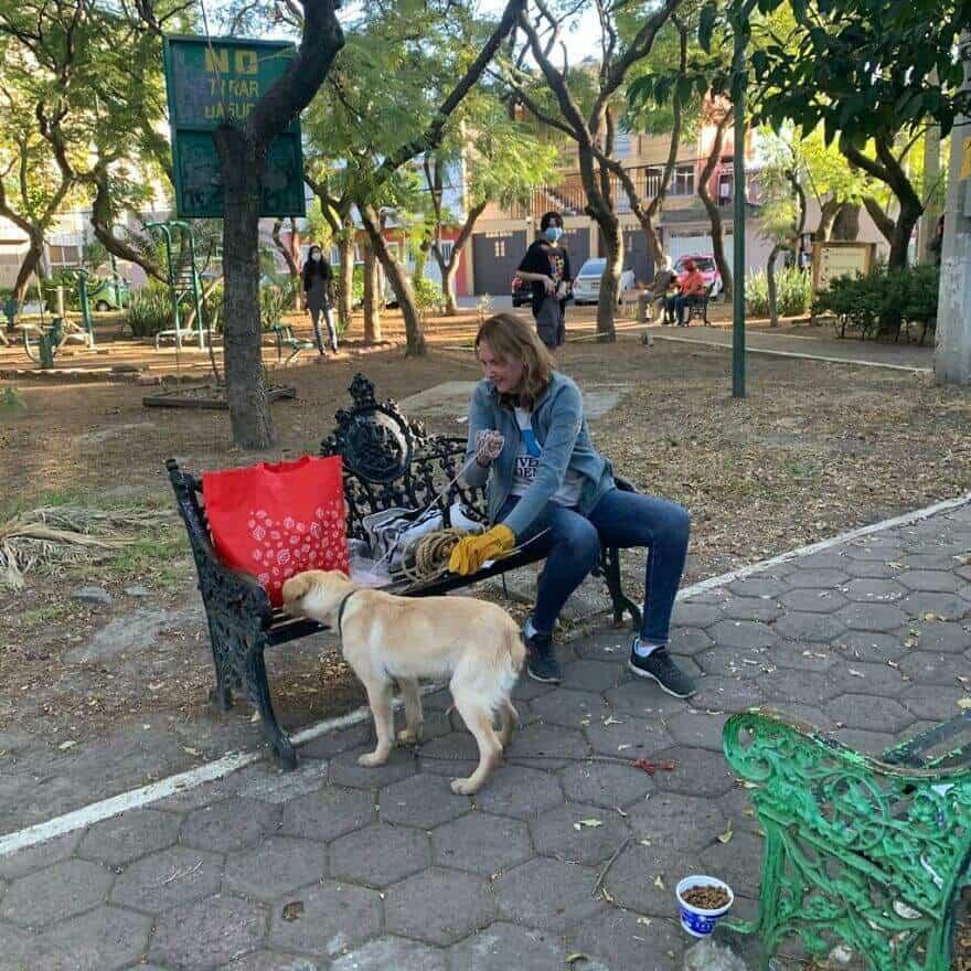 Criança comove o mundo ao deixar seu cãozinho em parque com bilhete descrevendo o motivo