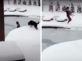 Cachorro cai em piscina congelada, dona se joga, quebra gelo e o resgata com vida!