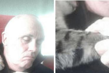 Gato invade casa e faz algo INUSITADO para homem que repousava após cirurgia