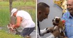 Lembra do filhote que foi salvo da boca de um crocodilo por seu dono? Ele ganhou um TÍTULO e uma linda homenagem