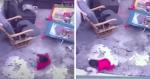 Gato vê bebê se aproximar de escada e faz de TUDO para lhe salvar de acidente