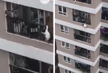 Entregador salva garotinha de 2 anos que caiu da varanda do 12º andar